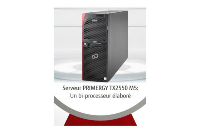 Serveur PRIMERGY TX2550 M5 : un bi-processeur �labor�